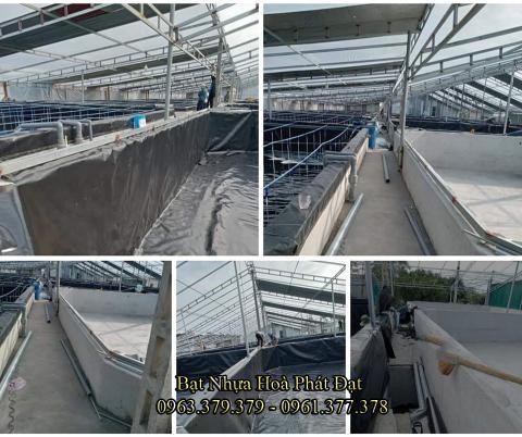 Bảng giá bạt chống thấm lót hồ chứa nước, bán màng (bạt) nhựa đen HDPE lót ao hồ nuôi cá tôm ở tại Thanh Hoá
